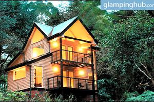 Luxurious Treehouses Within Australian Rainforest in Victoria, Australia