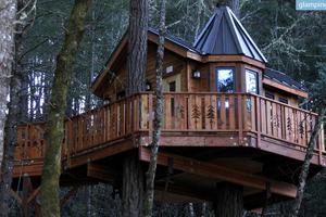Bed and Breakfast Tree Houses Near Redwood Forest, Southern Oregon