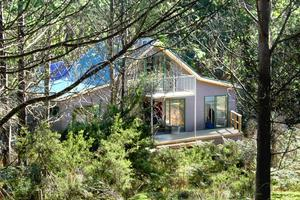 Tree Cabins in Secluded Private Habitat Reserve, Tasmania