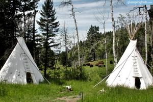 Traditional Sioux and Cheyenne Style Tipis on Bison Ranch in Montana