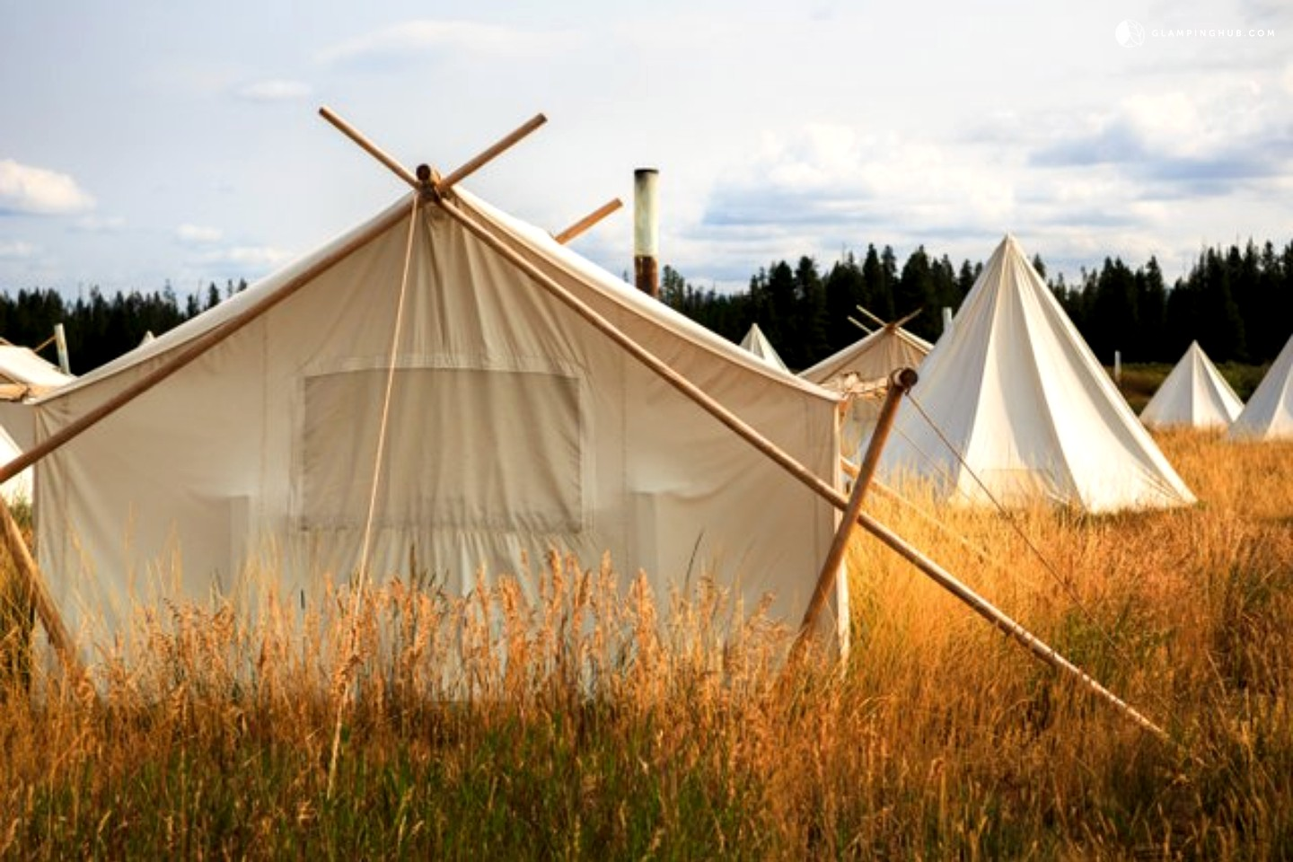 Save money online with Family C&ing Tents deals sales and discounts October 2017. & Family tents deals : King richards faire coupons walgreens