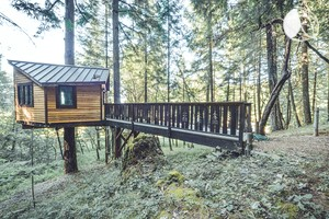 Bed and Breakfast Tree House Nestled in Forest, Oregon