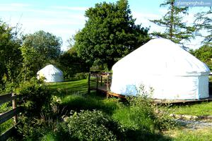 Unique Yurts in Peaceful Corner of Powys, Wales