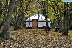 Cozy Yurts for Couples or Groups in East Sussex, England
