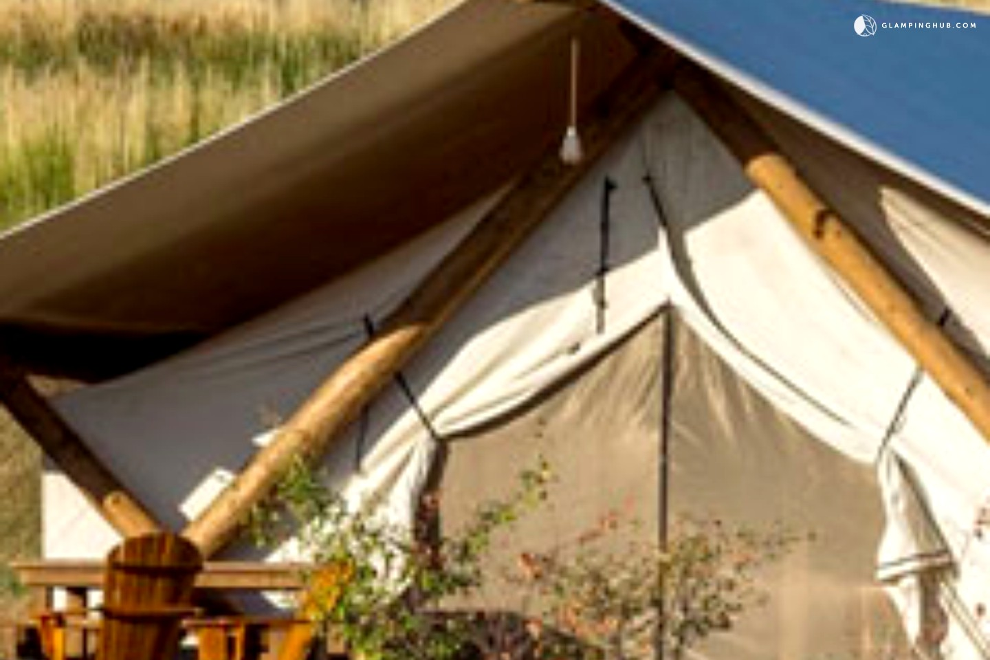 G Bear Tent Bell Tents for Camping...