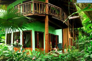 Exotic Eco-Tourism at Rainforest Guest House in Puntarenas, Costa Rica