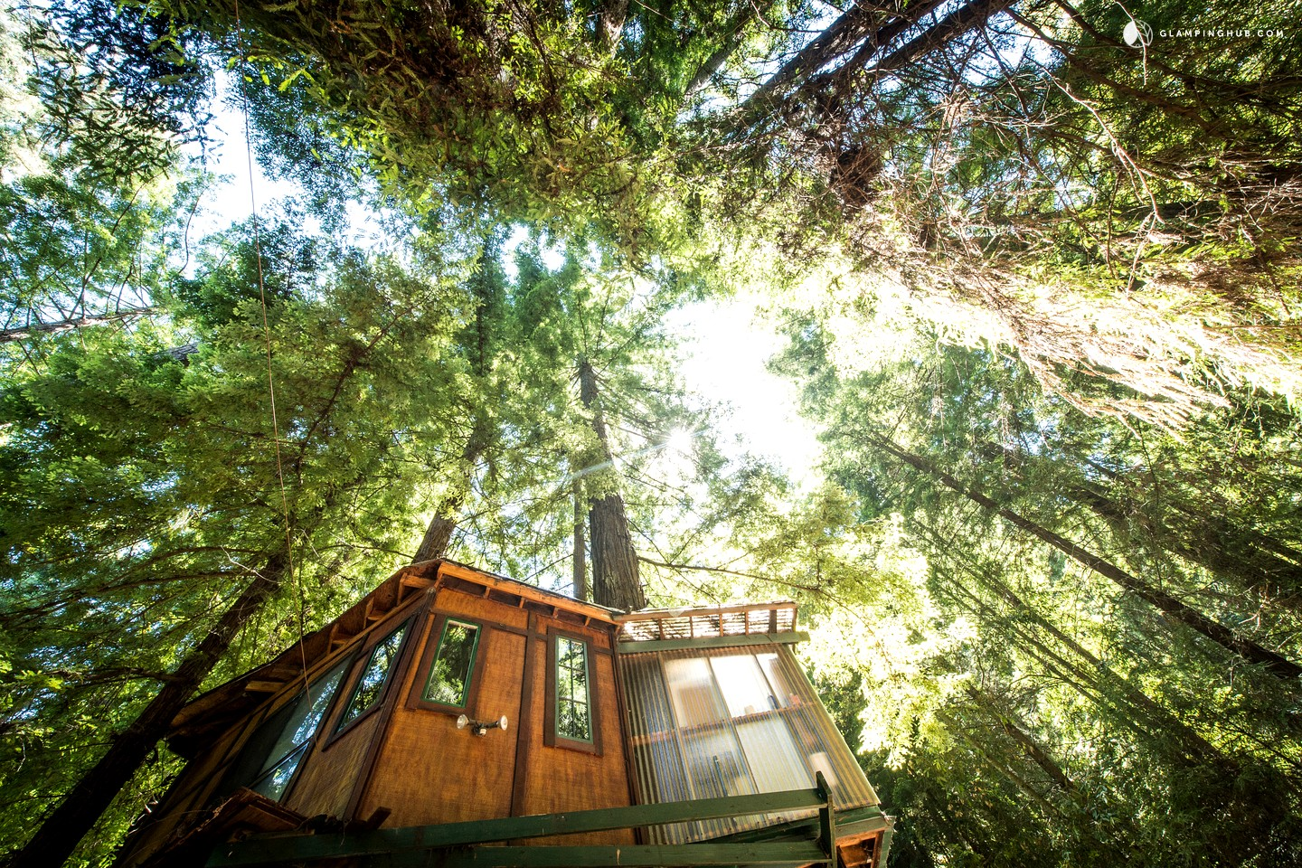 Glamping Tree House In Santa Cruz Mountains Near Monterey