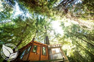 Glamping Tree House in Santa Cruz Mountains near Monterey Bay, CA