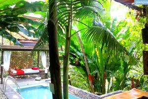Beautiful Eco-Friendly Suites in the Jungle near the Beach in Costa Rica