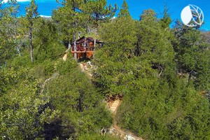 Luxurious Tree House Perched on the Mountains of Julian, California