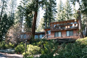 Stylish Woodland Cabin Rental with Tree House for Kids on Lake Tahoe