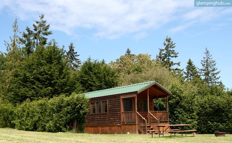 deluxe cabin with mountain view near port angeles washington