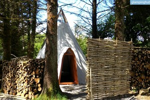 Green Glamping from Modern Tipi on Family-Friendly Cider Orchard, Ireland