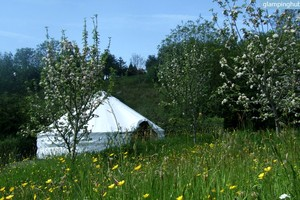 Eco-Friendly Celtic Yurts on Family-Friendly Cider Orchard, Ireland