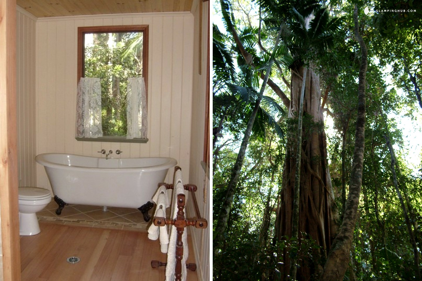 Mount Glorious Australia  city pictures gallery : Photo of Romantic Cottage with Veranda in Rainforest, Australia