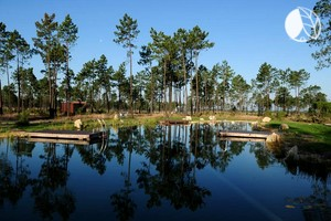 Secluded Eco-Lodges near Lisbon, Portugal
