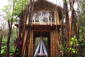 Secluded, Stylish Tree House in Fern Forest on the Island of Hawaii