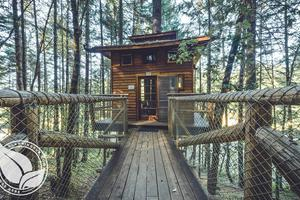 Rogue River Forest Tree House in South Oregon
