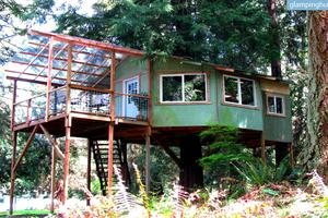 Forest Tree House in Washington Nestled Away Near Pacific Ocean