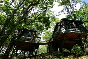 Unique Tree House Rental with Stunning River Views on Coast of Maine