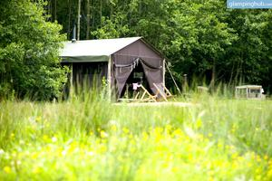 Cozy Tents Offer Luxurious Farm Stay in Shropshire, England