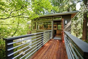 Modern Luxury Tree House Surrounded by Tranquil Forest in Seattle