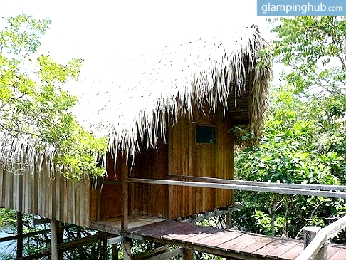 Treehouse Lodge Deep in the Amazon Rainforest - Brazil
