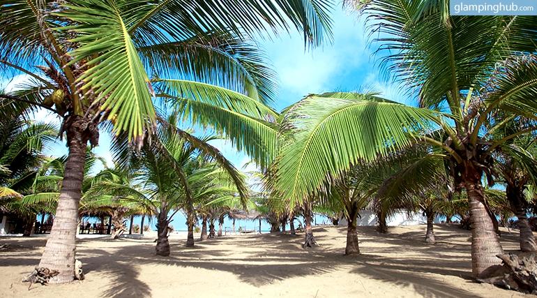Luxury Tents On The Beach Sri Lanka Glamping In Sri Lanka